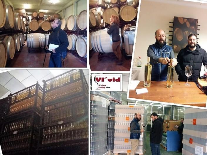collage vins del comtat
